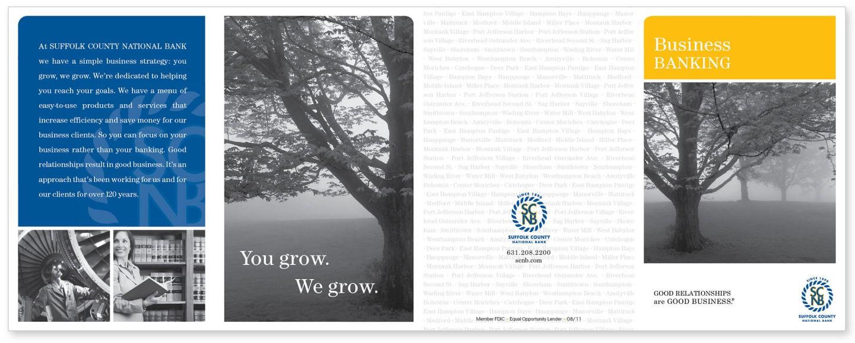 SCNB brochure