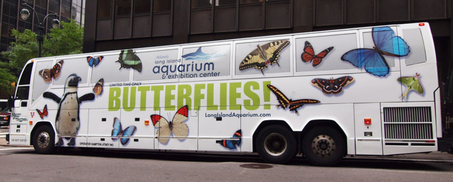 Long Island Aquarium bus wrap